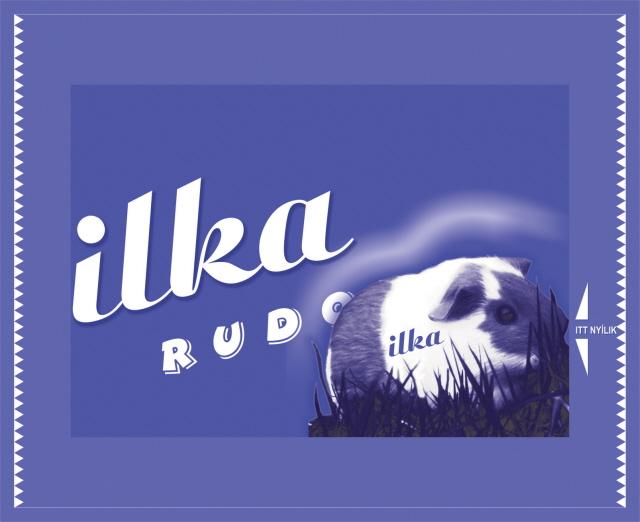 ilka-rudolf