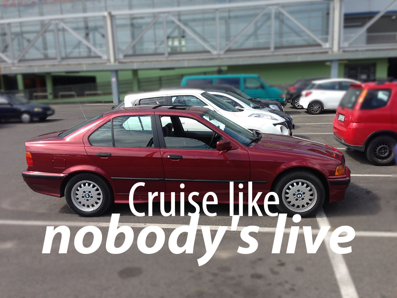 cruise-like-nobodys-live